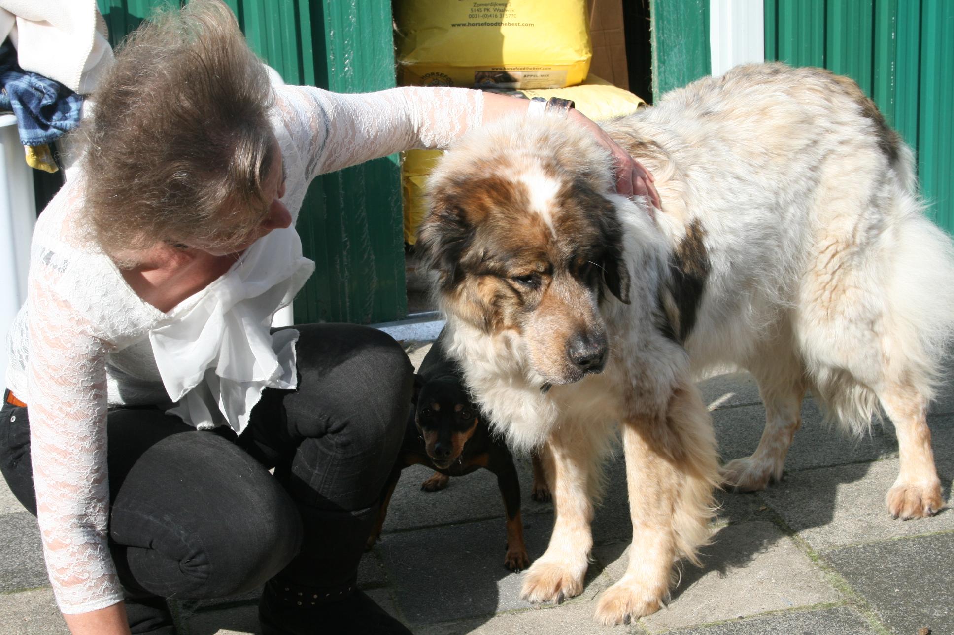 Krycha (grote hond) en Roxy (kleine hond)